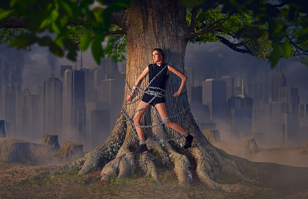 Last tree standing - a new photo for our portfolio.